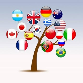 Lingua Express - cursuri de engleză